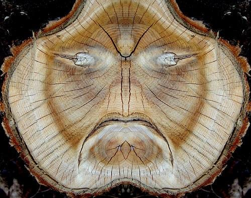 Duch přírody se zlobí.
