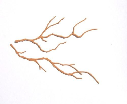 Dvě větve