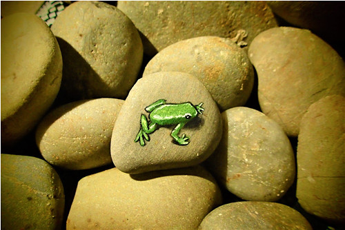 Žába na kameni
