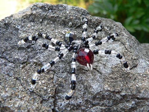 Pavouček stříbrno-černý