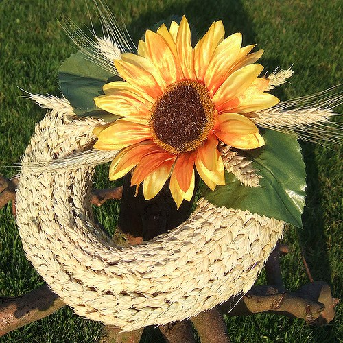Věneček-Pšenice a slunečnice