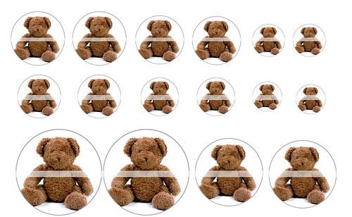 Návrh na pryskyřici - Medvědi č.1