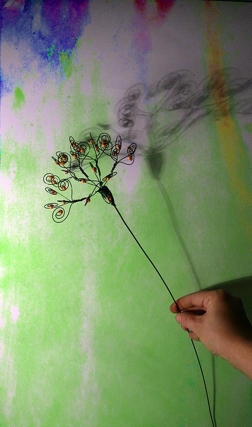 Luční květ- zápich