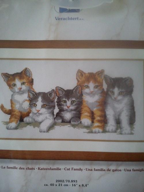 Kočičí rodina