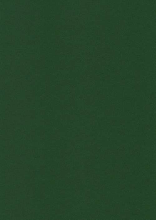Fotokarton A4 tmavě zelený