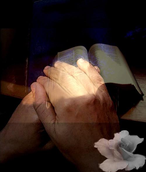 Ruce které nelze zapomenout