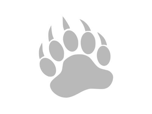 Medvědí tlapa - reflexní nažehlovačka