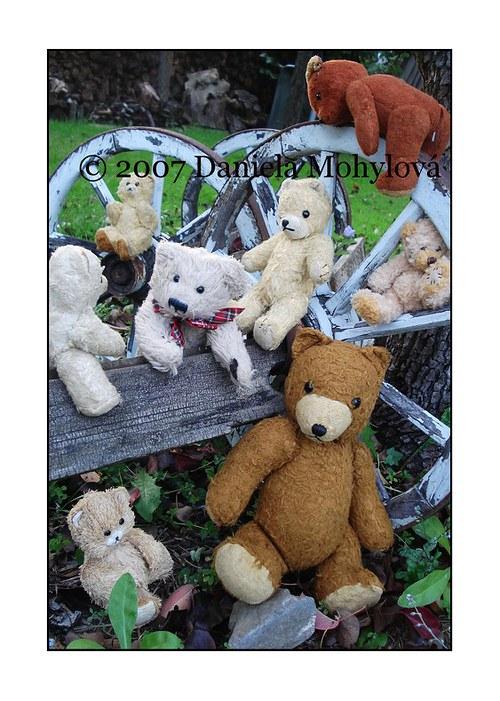 Příběhy hraček - medvědi
