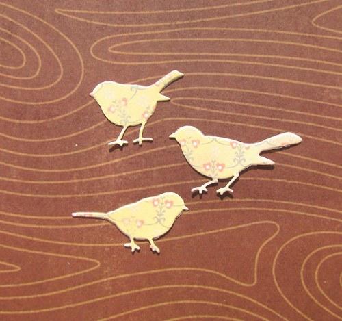 Tři ptáčci