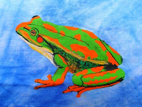 Žába - VÝPRODEJ
