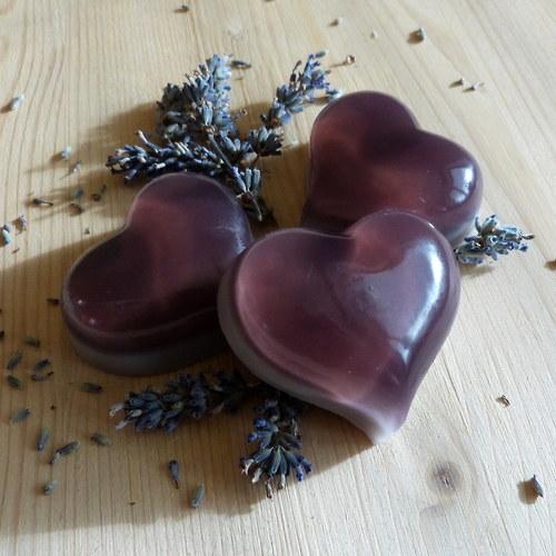 Srdíčko baculaté levandulové