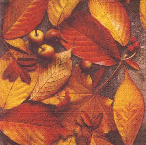 Ubrousek - podzimní listy a plody (2 ks)