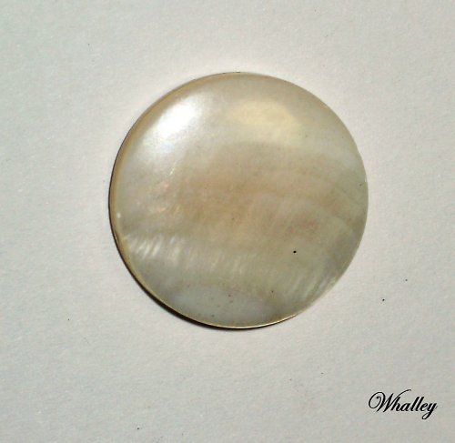 Perleťové kolečko-lentilka bílá 20mm