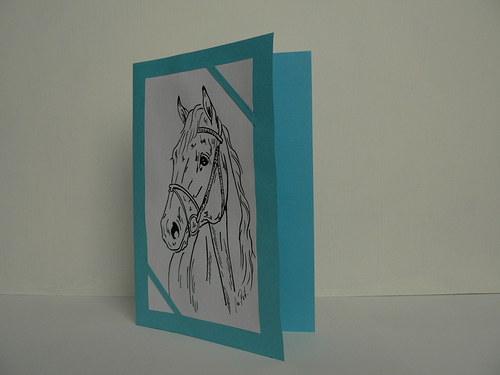 Přání portrét koně