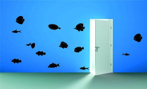 Samolepka na zeď - Ryby - set