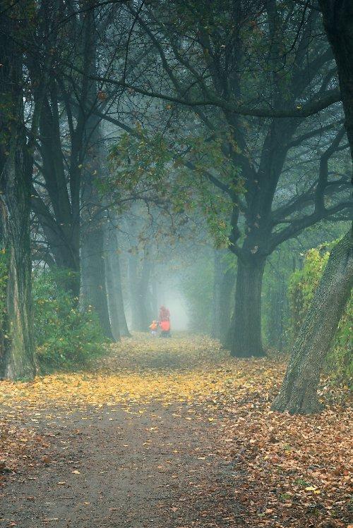 Podzimní procházení II