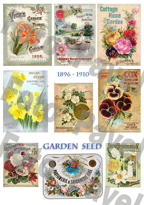 Vintage reklama - zahrada, semena 1
