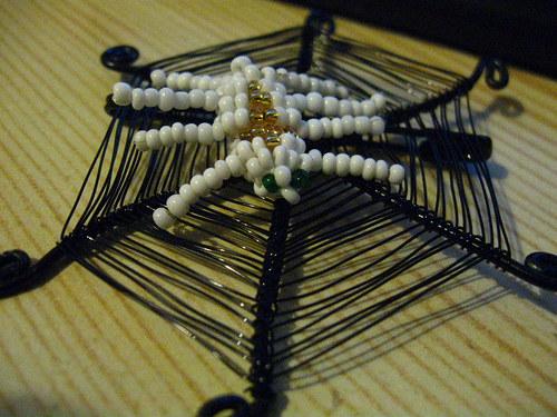 Pavouk na své síti