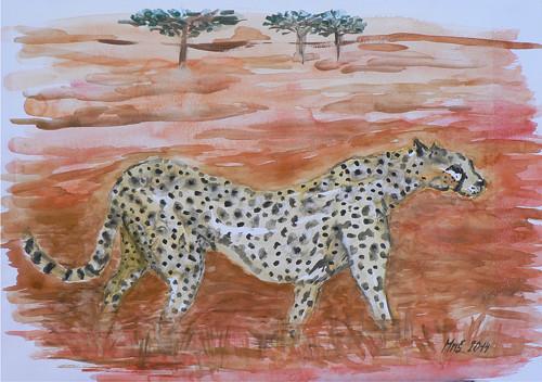 Gepard - akvarel
