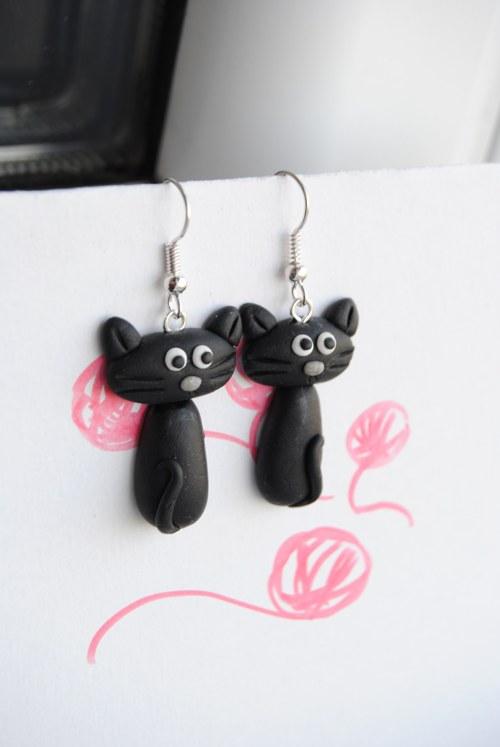 černá kočička na videu
