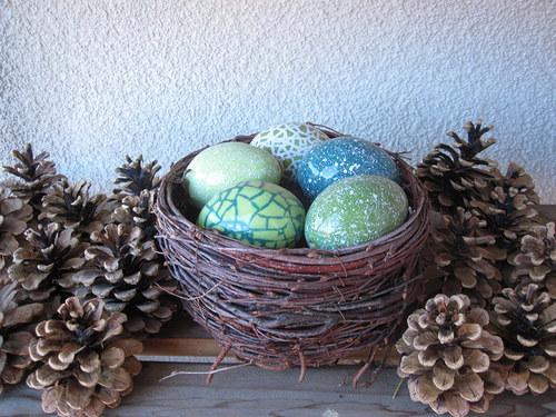 zelené  hnízdo