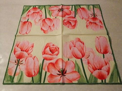 Květiny - tulipány 12.