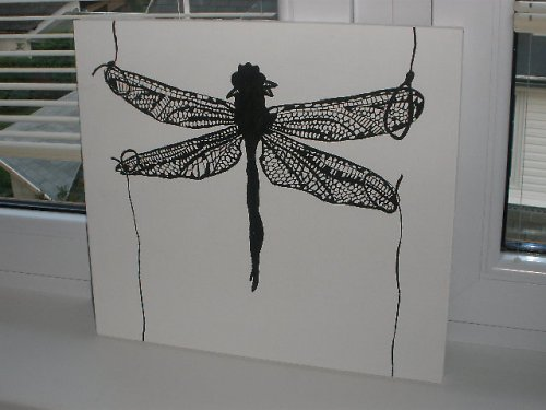 Vážka - Dragonfly