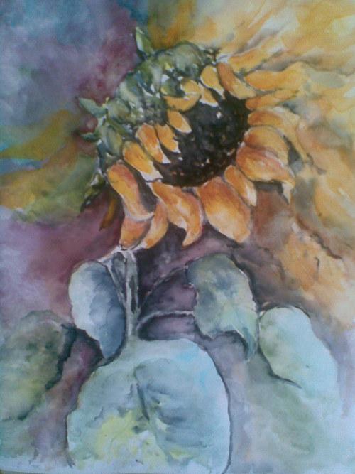 Slunečnice I.