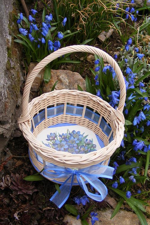 Modrý jaterník