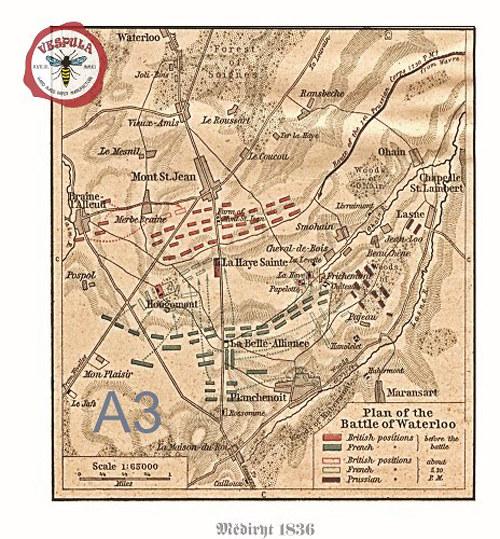 Napoleon, mapy bitev I