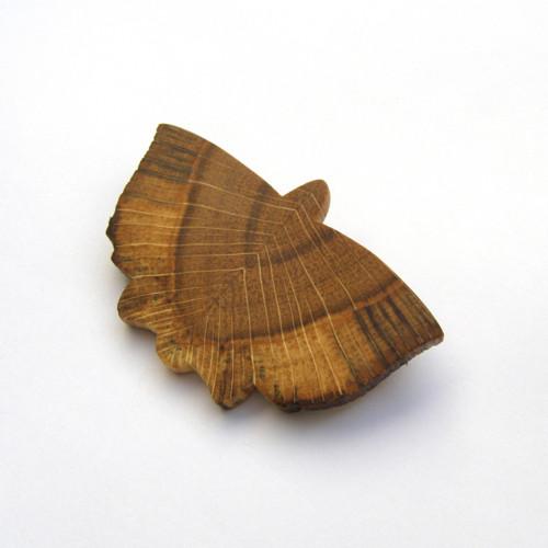 Motýlik dubový