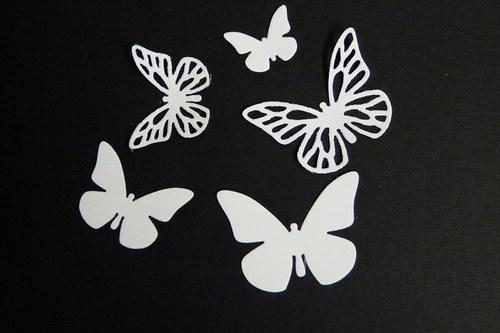 motýlci IV