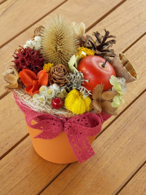 Podzimní květníček