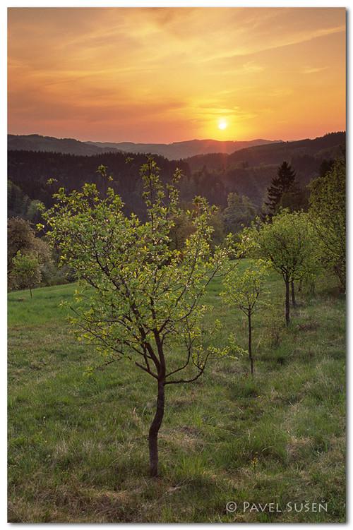 Jarní krajina