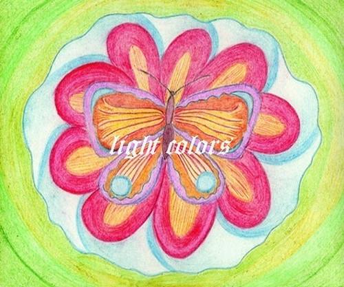 Motýlí siesta