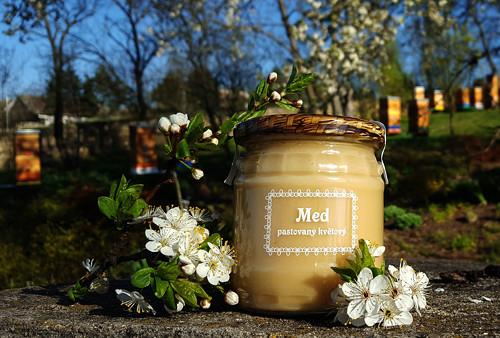 Med květový - pastovaný 500g