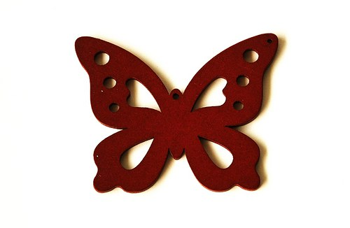 dřevění motýlci- červenohnědí