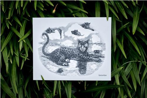 Panter na hladině • pohlednice bílá lesklá