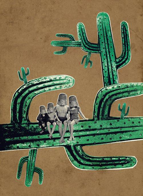 Cactus Family 2
