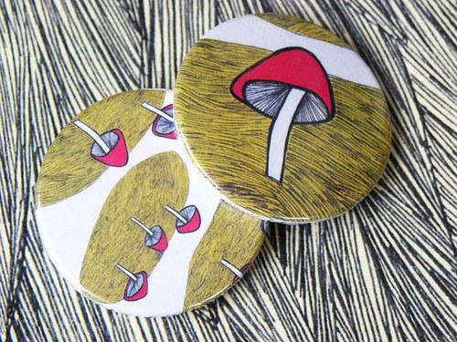 placky houby
