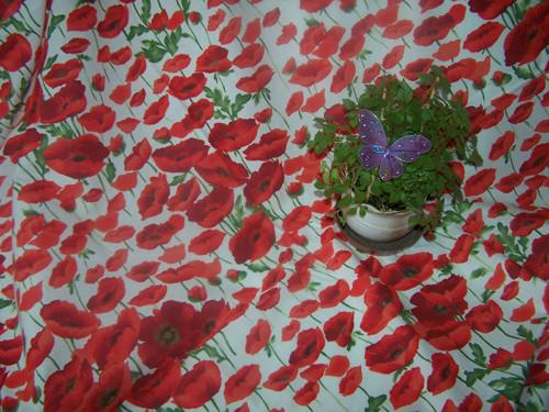 Ubrus 160x132cm Vlčí máky červené