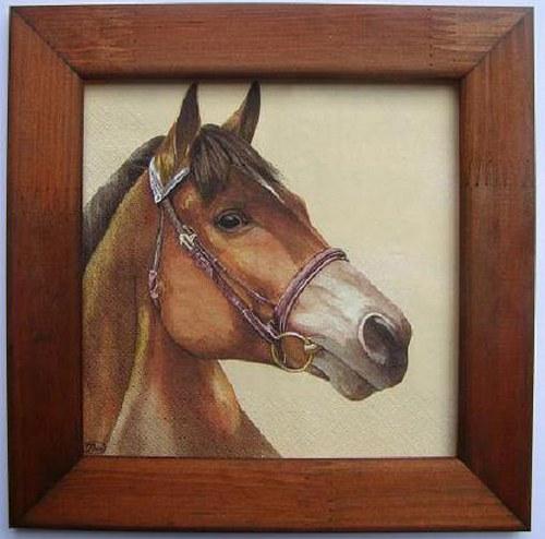 Obrázek č.M57 - Hlava koně