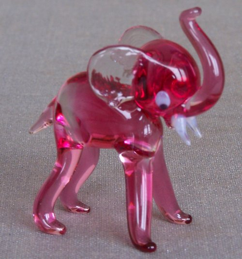 slůně růžové
