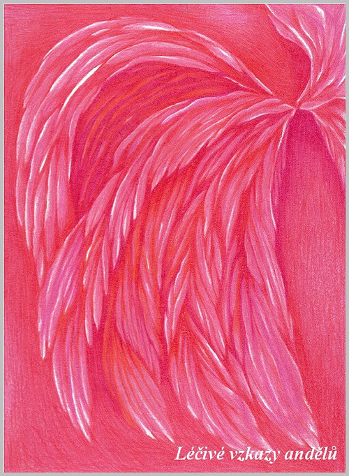 Růžová křídla Andělů - Pozvěte Anděly