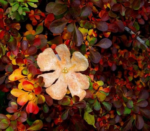 Malá žloutková - Podzimní kolekce