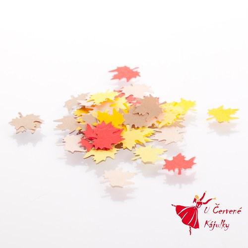 List javoru - barevné výseky