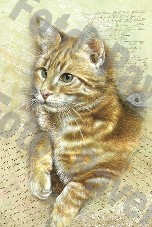 Vintage motiv - kočička 9