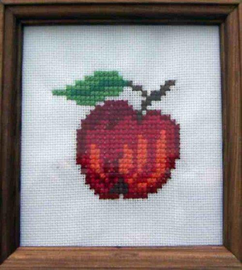 Vyšívaný obrázek - jablíčko