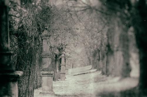 Křížová cesta - fotografie 40x30 cm