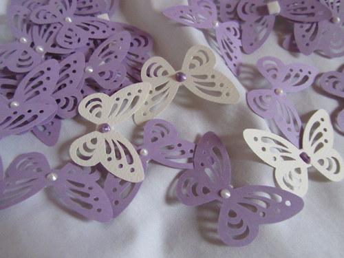 Svatební cedulky motýl na skleničky, na stůl